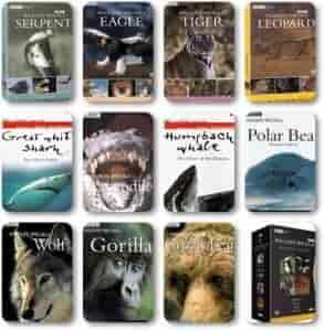 BBC Wildlife Belgesel Boxset Türkçe Altyazılı İndir
