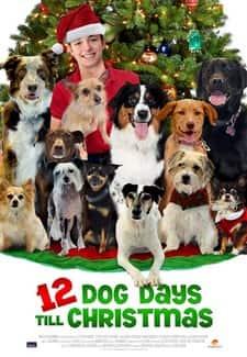 Noel'in 12 Köpeği - 12 Dog Days of Christmas 2014 ( WEB-DL XviD ) Türkçe Dublaj - Tek Link