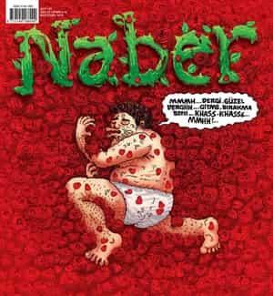 Naber Dergisi PDF indir