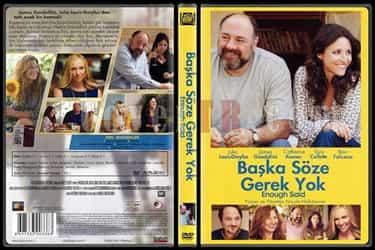 Başka Söze Gerek Yok - Enough Said Türkçe Dublaj DVD indir