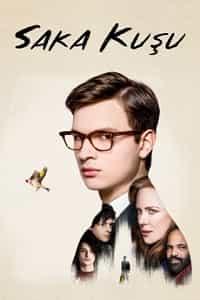 Saka Kuşu – The Goldfinch Türkçe Dublaj indir | 1080p BluRay | 2019