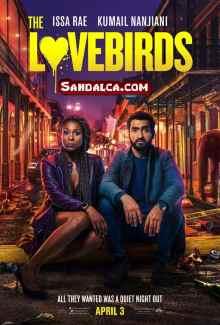 Muhabbet Kuşları – The Lovebirds Türkçe Dublaj indir | 1080p DUAL NF | 2020