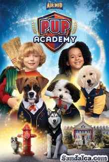 Pup Academy 1. Sezon Tüm Bölümleri Türkçe Dublaj indir | 1080p DUAL