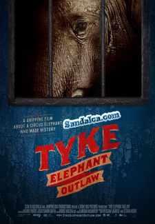 Fil Tykein Hikayesi – Tyke Elephant Outlaw Türkçe Dublaj indir | DUAL | 2015